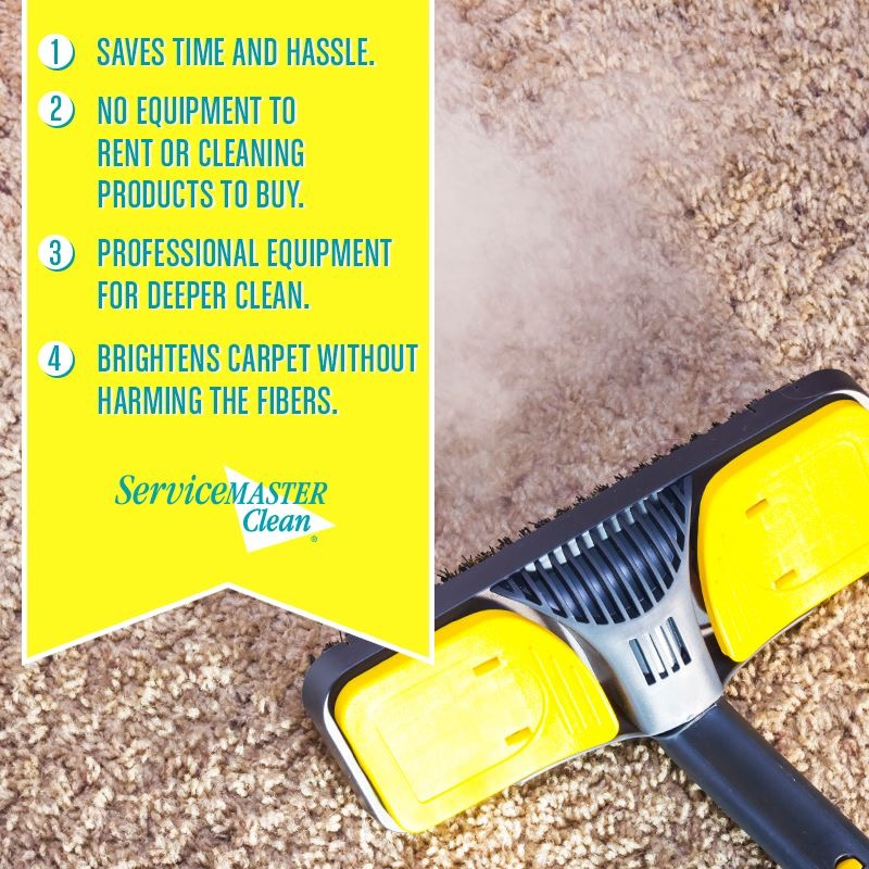 carpet cleaning reasons